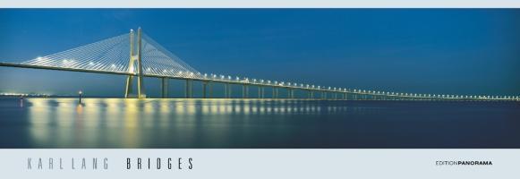 Cover-Bild zu Bridges Infinity