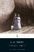 Cover-Bild zu Forster, E.M.: A Passage to India