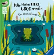 Cover-Bild zu Clima, Gabriele: Wie kleine Tiere groß werden: Der kleine Frosch
