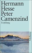 Cover-Bild zu Hesse, Hermann: Peter Camenzind