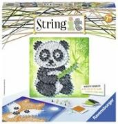 Cover-Bild zu String It Panda & Fox