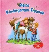Cover-Bild zu Meine Kindergartenfreunde (Ponys)