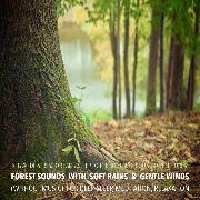 Cover-Bild zu eBook Forest Sounds with Soft Rains & Gentle Winds (without music) for Deep Sleep, Meditation, Relaxation