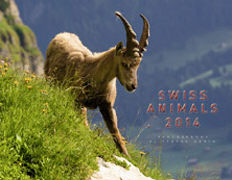 Cover-Bild zu Swiss Animals 2014