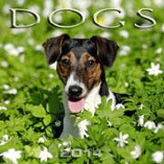 Cover-Bild zu Dogs 2014