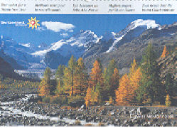 Cover-Bild zu Swiss Regio 2008