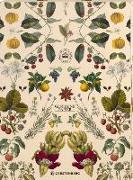 Cover-Bild zu Kew Gardens Geschenkpapier-Heft - Motiv Früchte