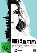 Cover-Bild zu Grey's Anatomy - 13. Staffel