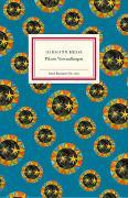 Cover-Bild zu Hesse, Hermann: Piktors Verwandlungen