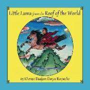 Cover-Bild zu Rinpoche, Khenpo Dudjom Dorjee: Little Lama from the Roof of the World