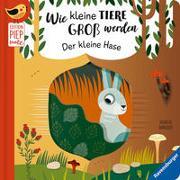 Cover-Bild zu Clima, Gabriele: Wie kleine Tiere groß werden: Der kleine Hase