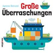 Cover-Bild zu Baruzzi, Agnese: Große Überraschungen