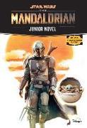 Cover-Bild zu Schreiber, Joe: Star Wars: The Mandalorian Junior Novel