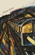 Cover-Bild zu Sollors, Werner: Ethnic Modernism