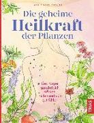 Cover-Bild zu Groves, Maria Noel: Die geheime Heilkraft der Pflanzen