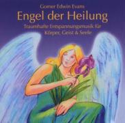Cover-Bild zu Evans, Gomer Edwin: Engel der Heilung