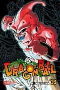 Cover-Bild zu Toriyama, Akira: Dragon Ball Massiv 13