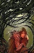 Cover-Bild zu Ron Marz: Witchblade: Borne Again Volume 3