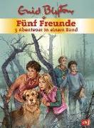 Cover-Bild zu Blyton, Enid: Fünf Freunde - 3 Abenteuer in einem Band