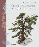 Cover-Bild zu Überlebenskünstler von Schauer, Thomas
