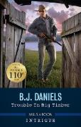 Cover-Bild zu Daniels, B. J.: Trouble in Big Timber (eBook)