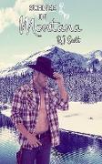 Cover-Bild zu Scott, Rj: Schnee in Montana (eBook)
