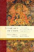 Cover-Bild zu Padmasambhava: A Garland of Views
