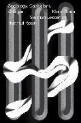 Cover-Bild zu Rosa, Hartmut: Sociology, Capitalism, Critique