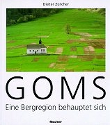 Cover-Bild zu Goms - eine Bergregion behauptet sich