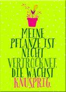 Cover-Bild zu Blatt & Blüte Magnet Knusprig