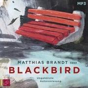 Cover-Bild zu Blackbird von Brandt, Matthias