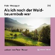 Cover-Bild zu Als ich noch der Waldbauernbub war (Audio Download) von Rosegger, Peter