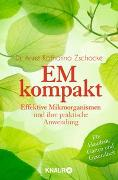 Cover-Bild zu Zschocke, Anne Katharina: EM kompakt