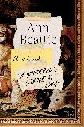 Cover-Bild zu Beattie, Ann: A Wonderful Stroke of Luck