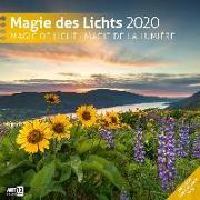 Cover-Bild zu Magie des Lichts 2020