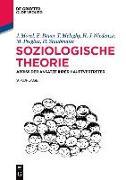 Cover-Bild zu Soziologische Theorie von Morel, Julius