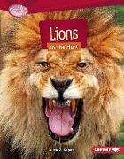 Cover-Bild zu LIONS ON THE HUNT von Klepeis, Alicia Z.