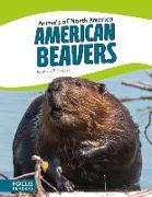 Cover-Bild zu American Beavers von Klepeis, Alicia Z.