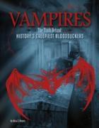 Cover-Bild zu Vampires (eBook) von Klepeis, Alicia Z.