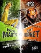 Cover-Bild zu Praying Mantis vs. Giant Hornet: Battle of the Powerful Predators von Klepeis, Alicia Z.