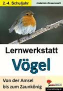 Cover-Bild zu Lernwerkstatt Vögel Von der Amsel bis zum Zaunkönig von Rosenwald, Gabriela