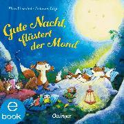Cover-Bild zu Lütje, Susanne: Gute Nacht, flüstert der Mond (eBook)