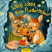 Cover-Bild zu Lütje, Susanne: Schlaf schön, kleine Fledermaus!