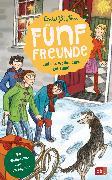 Cover-Bild zu Blyton, Enid: Fünf Freunde und das Weihnachtsgeheimnis (eBook)