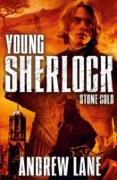 Cover-Bild zu Lane, Andrew: Young Sherlock Holmes 7: Stone Cold (eBook)