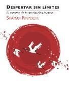Cover-Bild zu eBook Despertar Sin Limites