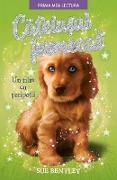 Cover-Bild zu Bentley, Sue: Ca¿elu¿ul Fermecat (eBook)