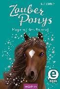 Cover-Bild zu Bentley, Sue: Zauberponys - Magie auf dem Reiterhof (eBook)