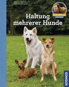 Cover-Bild zu Rütter, Martin: Haltung mehrerer Hunde
