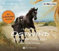 Cover-Bild zu Ostwind - Auf der Suche nach Morgen von Schmidbauer, Lea